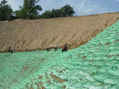 植生袋公路护坡养护措施
