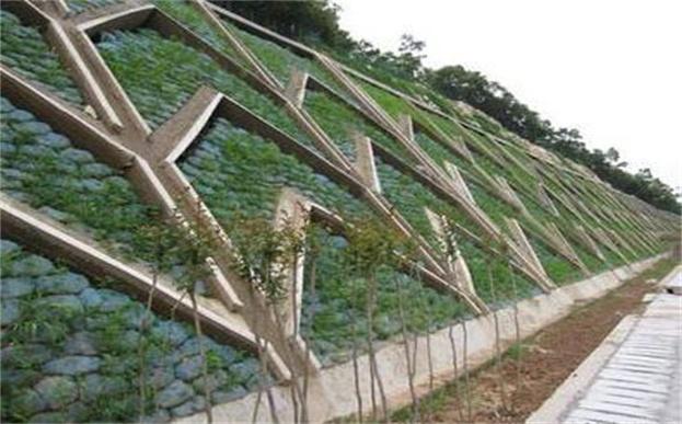 框架梁内常用60×35的生态袋