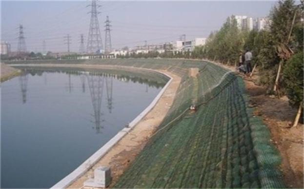 生态袋绿化护理城市中的河流边坡