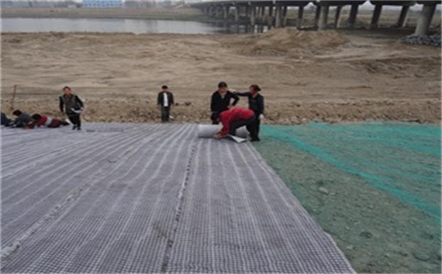 抗冲生物毯河道护坡专用护坡绿化生态毯
