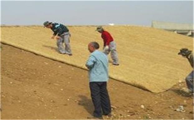 环保草毯高速公路边坡绿化护理步骤