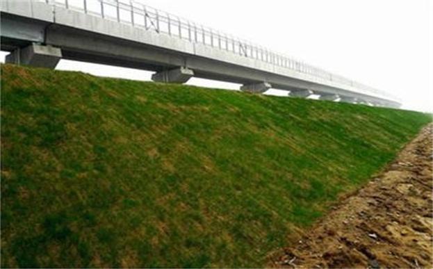 环保草毯草籽撒播方法