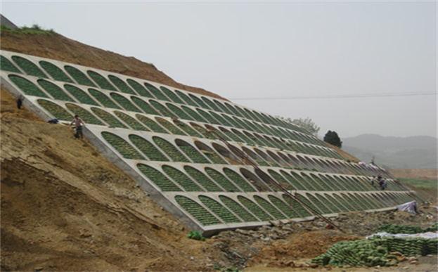 草种植生袋护坡施工现场