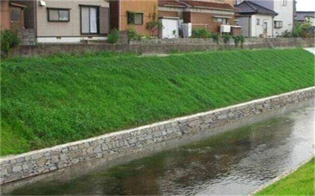 环保草毯护理小清河畔