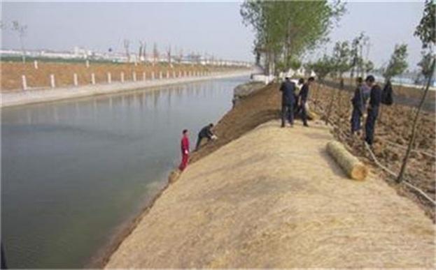植物纤维毯施工河道边坡