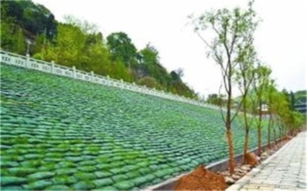 植生袋公园绿化