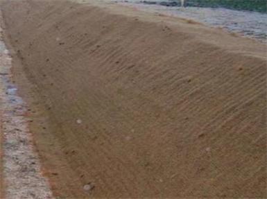 植物纤维毯护理德州引水灌渠边坡
