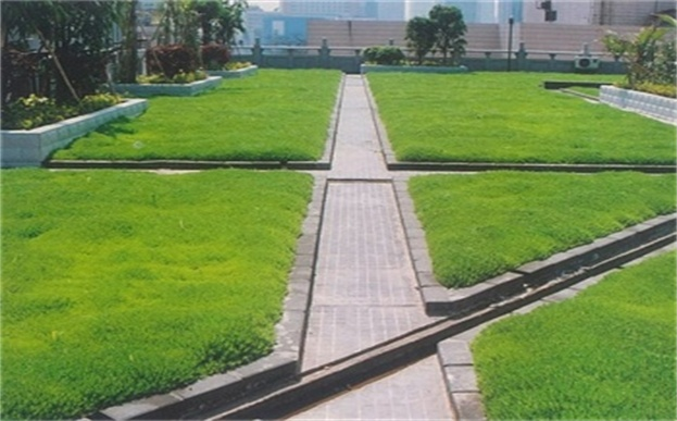 植生毯屋顶绿化
