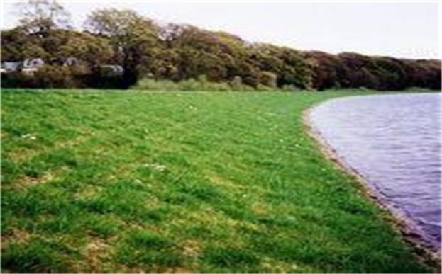 浅析边坡绿化