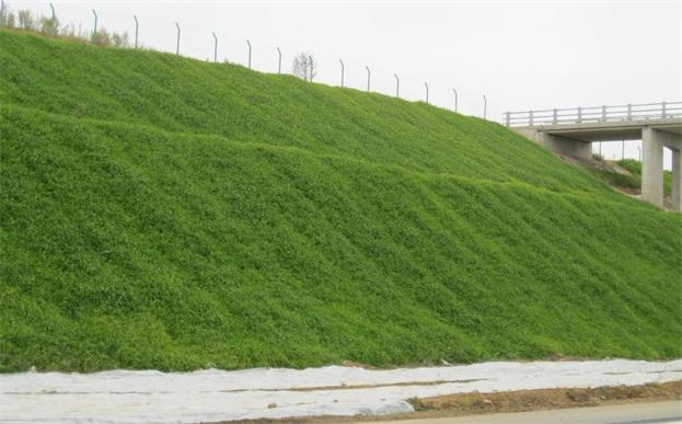 环保草毯系列产品:环保草毯(草籽)等9种