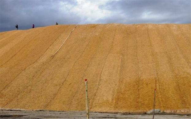 环保草毯对3种边坡防护