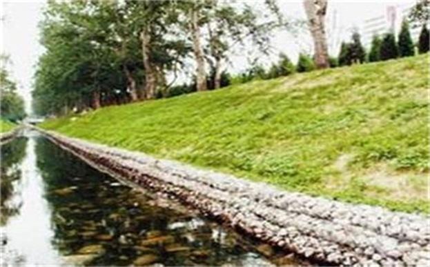 麻椰固土毯河道护坡绿化专用植生毯