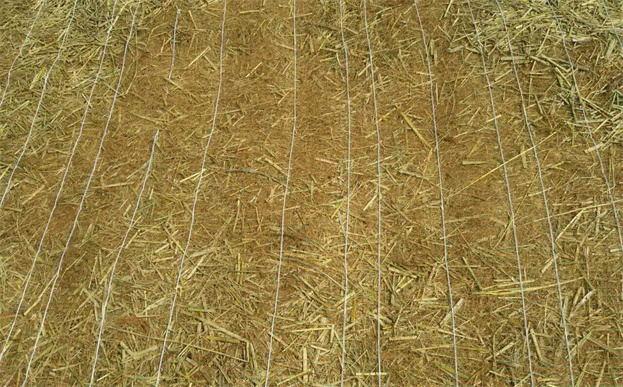 植生毯(混合)