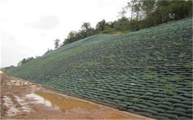 生态袋坡面洒水事项