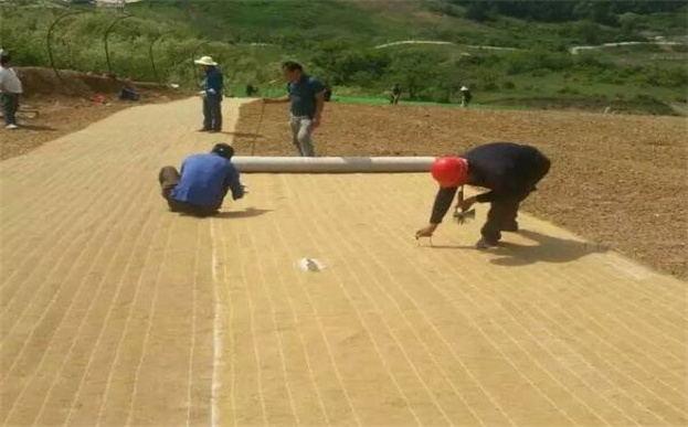 不带种子环保草毯护坡绿化施工工艺