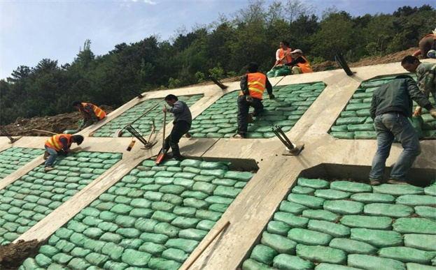植生袋绿化框架梁施工注意事项