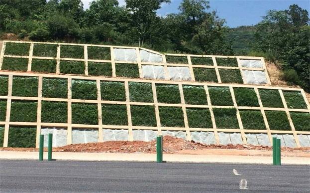 植生袋骨架梁边坡喷播后的工作